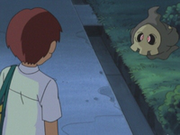 EP337 Timmy con Duskull.png