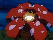EP187 Flor de Venusaur iluminada.png