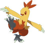 Combusken (anime AG).png