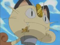 Pidgeot usando Ataque rápido.