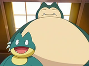 EP545 Munchlax y Snorlax.png
