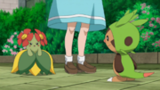 EP861 Bellossom y Chespin.png