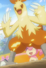 EP400 Combusken y Skitty.png