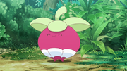 EP1051 Bounsweet.png