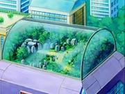 EP533 Vivero del centro Pokémon.png