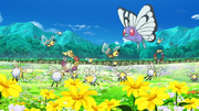 EP1045 Pokémon salvajes.png