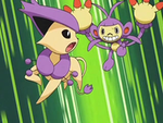 EP564 Delcatty vs Ambipom.png
