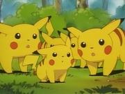 EP039 Pikachu pequeño.png