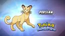 EP910 Cual es este Pokémon.png