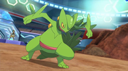 EP931 Sceptile.png