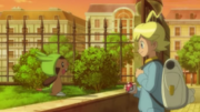 EP814 Chespin decide irse con Lem.png