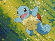 EP031 Squirtle.png