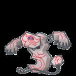 Runerigus macho