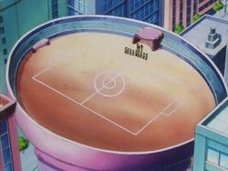 Campo de batalla del Gimnasio de Malva en el anime