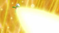 Roserade usando rayo solar.
