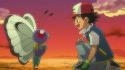 Butterfree de Ash