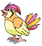 Pidgeotto (anime SO).png
