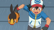 EP676 Tepig y Ash.png