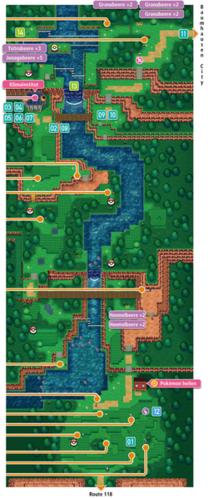 Mapa de la ruta 119