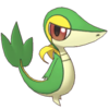 Snivy Masters.png