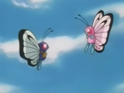 Butterfree danzando.