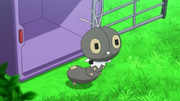 EP816 Scatterbug.png