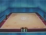EP014 Campo de batalla del gimnasio.jpg