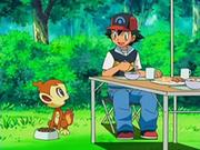 EP522 Chimchar sorprendido por el tratamiento de Ash y sus amigos.png