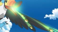 Toucannon salvaje usando semilladora.