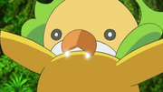EP678 Sewaddle usando bug bite.png