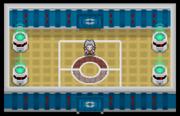 Liga Pokémon (Sinnoh) Sala Gaia DP.png