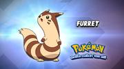EP908 Cual es este Pokémon.png