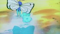Butterfree usando somnífero.