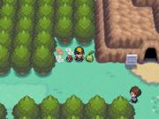 Localización de la poción en la ruta 31 en Pokémon Oro HeartGold y Plata SoulSilver.