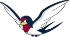 Taillow (dream world).png