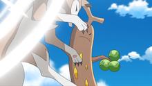 Sudowoodo de Brock usando finta.