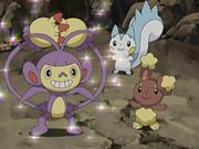 EP542 Pokémon de Maya.png
