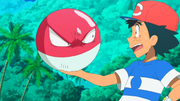 EP978 Voltorb.png
