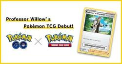 Willow x JCC.jpg