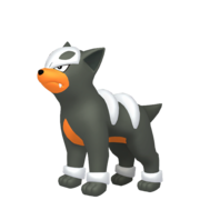 Houndour HOME.png