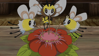 EP1064 Cutiefly y Ribombee.png