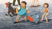 P10 Gible y Houndour.png