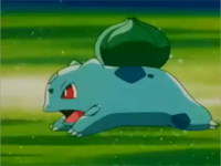 Bulbasaur usando derribo.