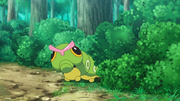 EP985 Caterpie.png