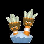 Binacle macho