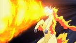Imagen de Fuegoveloz (Rapidash)