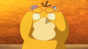 EP1097 Psyduck.png