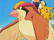 EP083 Ash y Pikachu montados en Pidgeot.png