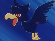 EP243 Murkrow.png