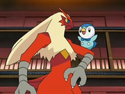 EP545 Blaziken con Piplup.png